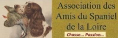 Associations cynégétiques départementales